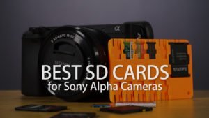The Best SD Cards for your Sony Alpha Camera